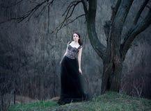 Mooi meisje met lang haar Royalty-vrije Stock Foto's