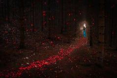 Mooi Meisje met rood haar in blauwe kleding die trog donkere bospassage met rode bloemblaadjes overgaan die rond vallen stock foto's
