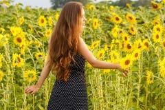 Mooi meisje met zonnebloemen Stock Afbeelding