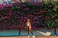 Mooi meisje op een achtergrond van een muur van bloeiende struiken stock foto's