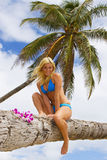 Mooi meisje op een palmtree Royalty-vrije Stock Afbeelding