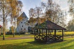 Mooi middeleeuws waterkasteel Brennhausen royalty-vrije stock foto