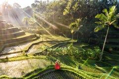 Mooi model in rode kleding bij Tegalalang-Rijstterras 3 royalty-vrije stock fotografie