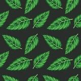 Mooi naadloos vector groen bloemenpatroon op zwarte backgrou vector illustratie