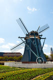 Mooi Nederlands windmolen Typisch landschap in Ja Stock Foto