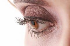 Mooi oog met zwarte en bruine oogschaduw en m royalty-vrije stock fotografie