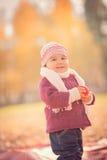 Mooi openlucht de herfstportret van aanbiddelijk peutermeisje Royalty-vrije Stock Foto
