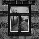 Mooi oud huis met het leiden van de manier aan geheimzinnige fores Royalty-vrije Stock Fotografie