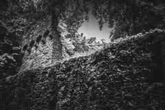 Mooi oud kasteel in Zwart-wit stock afbeelding