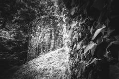 Mooi oud kasteel in Zwart-wit het bekijken platform royalty-vrije stock afbeeldingen