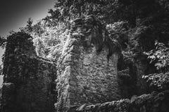 Mooi oud kasteel in Zwarte en Whiteold-toren stock afbeelding