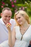 Mooi paar met appel op picknick Stock Foto