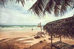 Mooi palmenstrand in tropisch klimaat Oceaan en ontspannende mensen die in golven bij zonnig weer zwemmen stock fotografie
