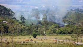 Mooi panorama van landbouwbedrijven en suikerrietgebieden die in de bergen in Costa Rica met groene wildernis branden stock afbeelding