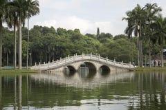 Mooi park in de stad stock foto