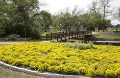 Mooi park in gemeenschap royalty-vrije stock afbeeldingen