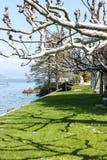 Mooi park langs meerkant Royalty-vrije Stock Afbeeldingen