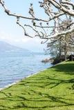 Mooi park langs meerkant Royalty-vrije Stock Foto