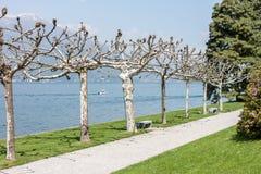 Mooi park langs meerkant Stock Foto's