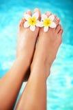 Mooi pedicured vrouwelijke voeten en tropische flowe royalty-vrije stock foto's
