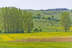 Mooi plattelandslandschap in Transsylvanië royalty-vrije stock afbeeldingen