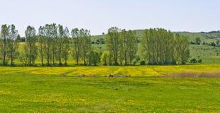 Mooi plattelandslandschap in Transsylvanië Royalty-vrije Stock Fotografie