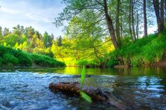 Mooi rivierlandschap Groene Rivieroever Het toneellandschap van de de zomerochtend royalty-vrije stock fotografie