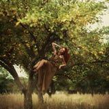 Mooi roodharig meisje in de appelboomgaard stock fotografie