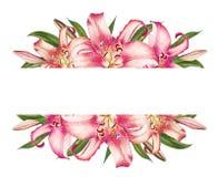 Mooi roze lelie bloementekstframe Boeket van bloemen Bloemendruk Tellerstekening stock illustratie