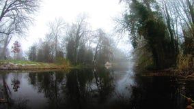 Mooi satellietbeeld, rivier tussen groene bomen stock videobeelden