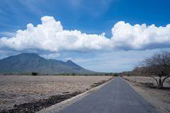 Mooi savannelandschap in Baluran Banyuwangi Indonesië stock foto