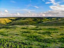 Mooi schilderachtig de lentelandschap met groene steppe royalty-vrije stock foto