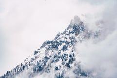 Mooi schot van een bewolkte die berg in sneeuw met grijze hemel wordt behandeld royalty-vrije stock fotografie