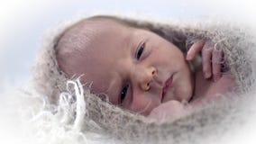 Mooi schot van het gezicht van de baby coverdup in wollen stock footage