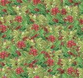 Mooi seamlesslpatroon - kruisbes groene takken en rode bessen vector illustratie
