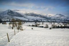 Mooi sneeuw behandeld de Winterlandschap bij zonsopgang in Piekdistr Stock Foto's