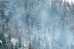 Mooi sneeuwbergbos in de dampen van de boilerinstallatie stock foto's