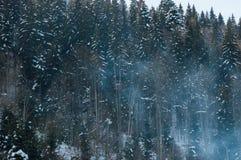 Mooi sneeuwbergbos in de dampen van de boilerinstallatie royalty-vrije stock foto