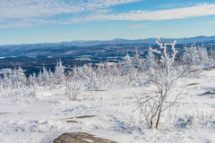 Mooi sneeuwlandschap in Quebec, Canada stock foto's