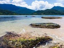 Mooi strand in Brazilië met uiterst schone en duidelijke overzees Stock Fotografie
