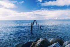 Mooi strand in Bridport, Tasmanige, Australië Stock Afbeeldingen