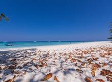 Mooi strand met boot, blad en ruimte voor uw ontwerp Stock Foto's