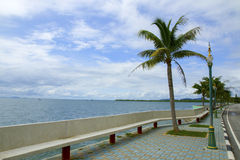 Mooi strand met kokospalmen Royalty-vrije Stock Foto