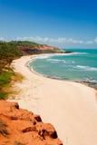 Mooi strand met palmen stock foto's