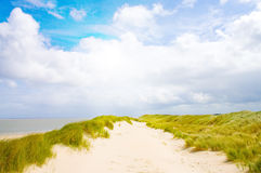 Mooi strand met zonlicht Royalty-vrije Stock Foto