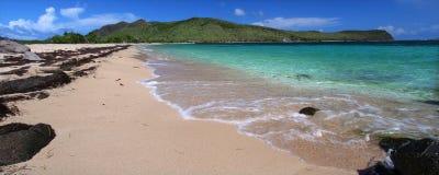 Mooi strand op Heilige Kitts stock foto