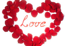 Mooi symbool van hart van rode roze die bloemblaadjes op wit met Liefdewoord worden geïsoleerd in het centrum Stock Afbeelding