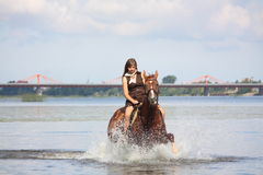 Mooi tiener het berijden paard in de rivier Royalty-vrije Stock Foto