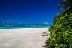 Mooi tropisch landschap royalty-vrije stock foto's