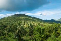 Mooi tropisch landschap van meningspunt van Koh Phangan stock foto